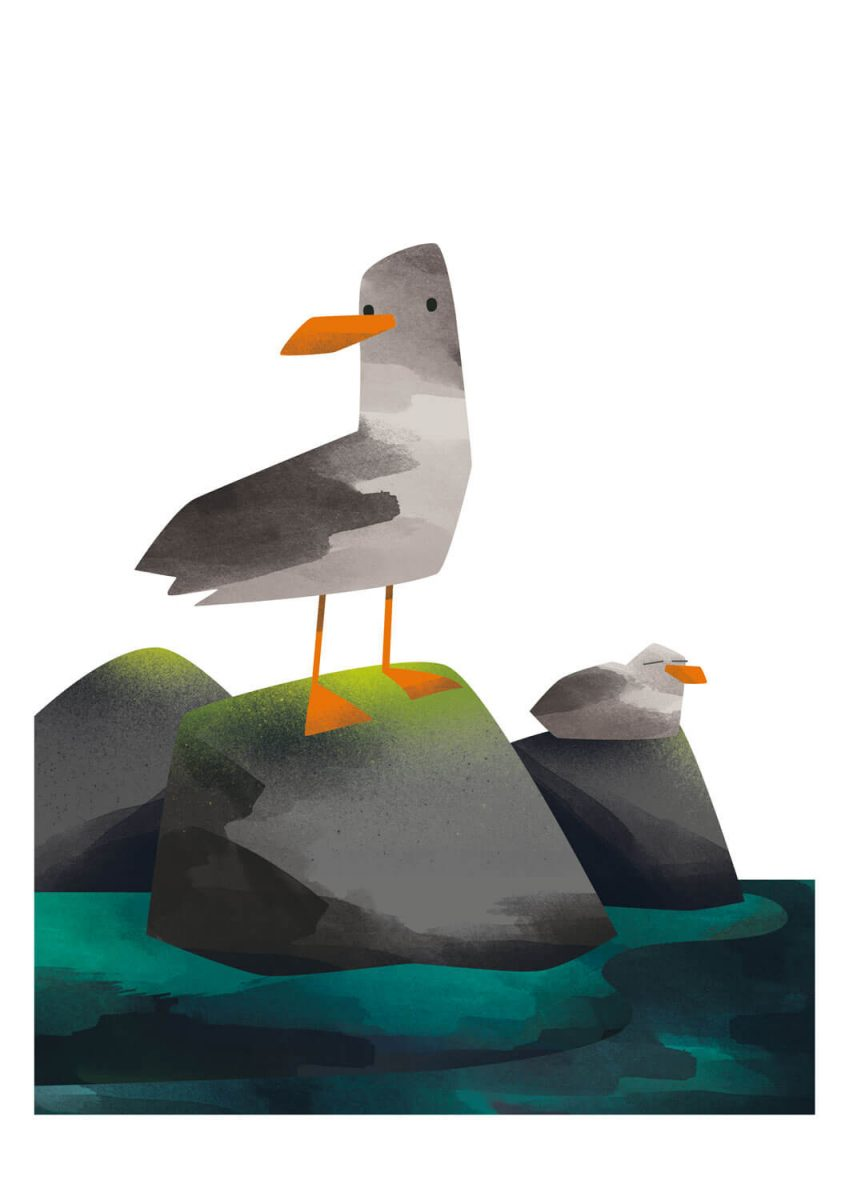 Seagull Prints - Michael Goodson